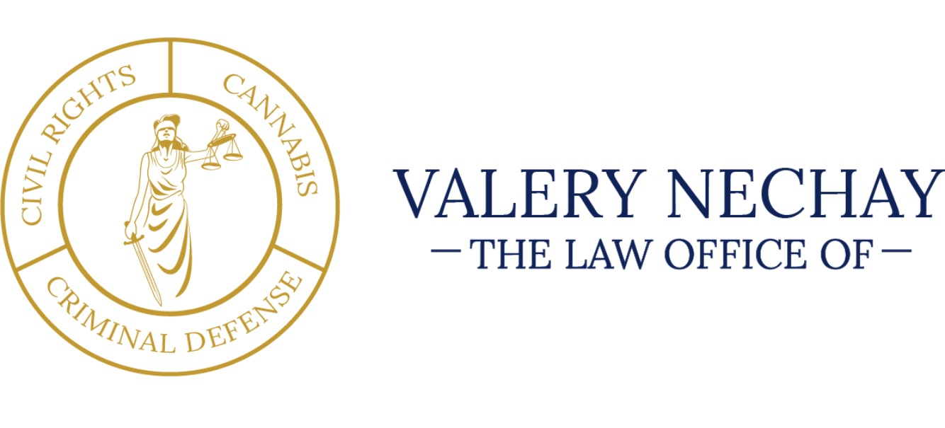 The Law Office of Valery Nechay